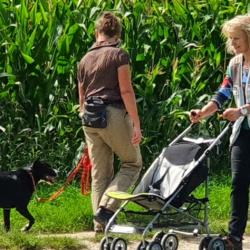 Nationales Hundehalter Brevet NHB 2021